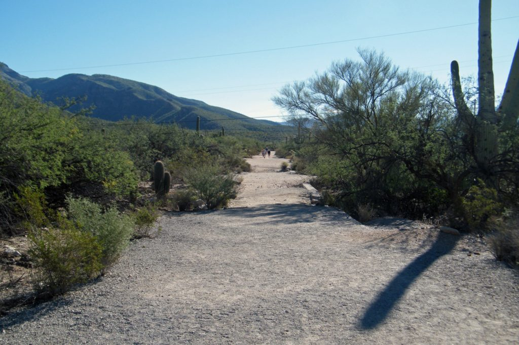 Wide dirt pathway near the visitor center.