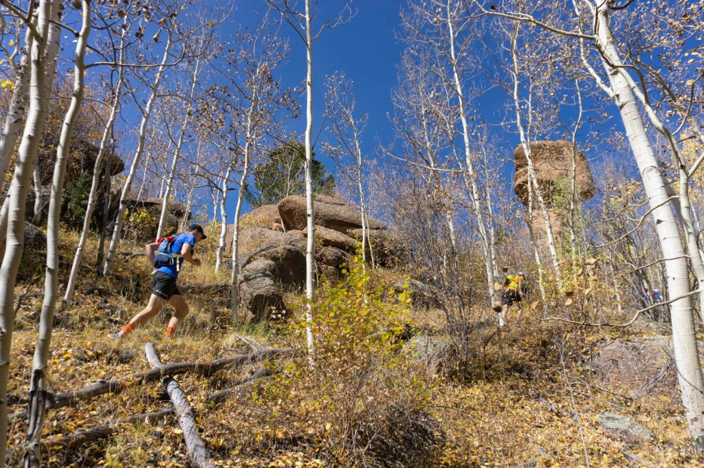 Eric runs the trail through a stand of nearly finished Aspen.